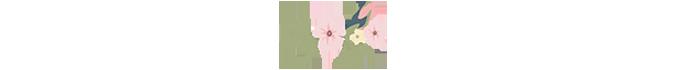 flori-mici