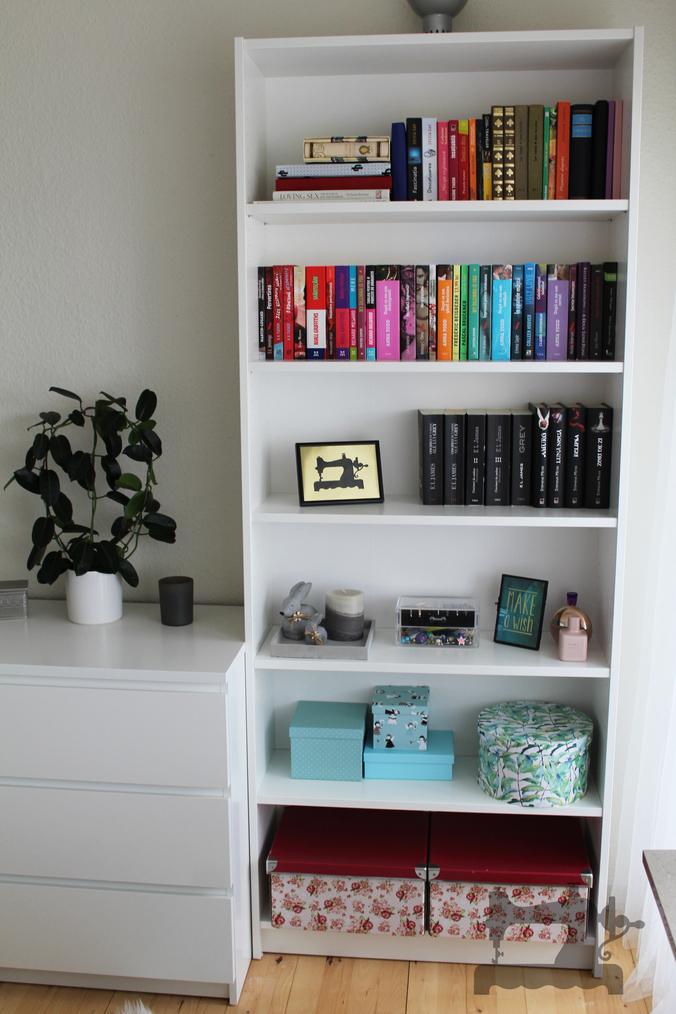 micuta mea biblioteca04