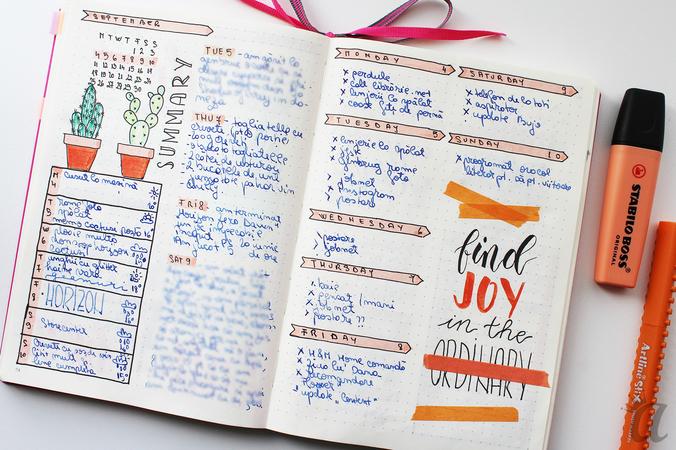 Flip through Bullet Journal september3