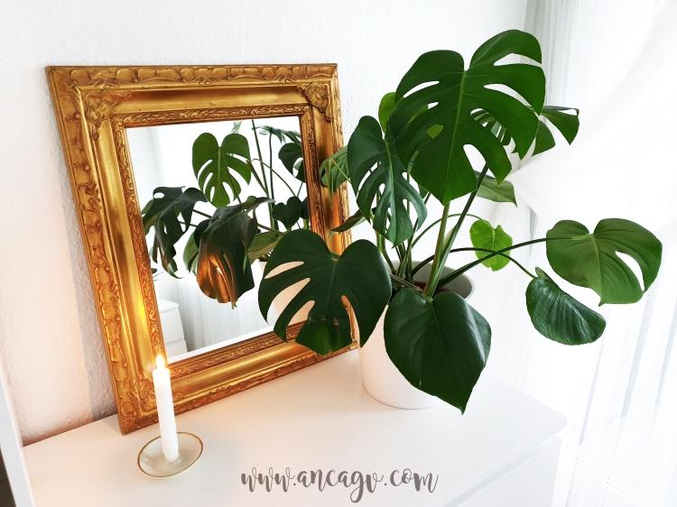 restaurarea unei oglinzi cu rama vintage12
