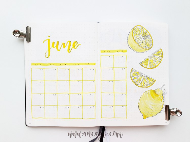 bullet-journal-june-2019
