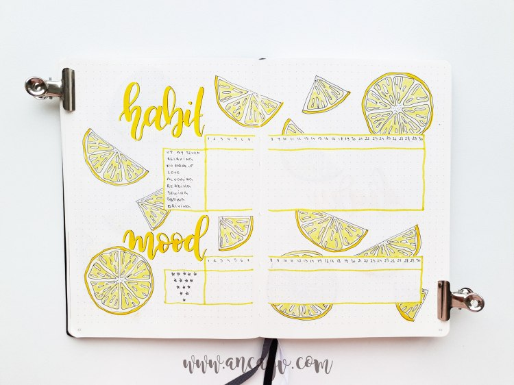 bullet-journal-june-20191